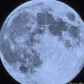 Blue Moon Up Close And Personal by Jennifer Broadstreet Hess