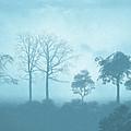 Blue Morning by Anthony Mwangi