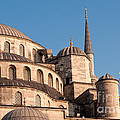 Blue Mosque Domes 08 by Rick Piper Photography