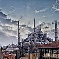 Blue Mosque In Istanbul by Sophie McAulay
