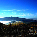 Blue Mountain Landscape Umbria Italy by Femina Photo Art By Maggie