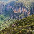 Blue Mountains Viewpoint by Bob Phillips