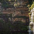 Blue Mountains Waterfall by Tim Hester
