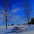 Blue On A Snowy Day by Dan Sproul