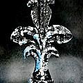 Blue On Black by Scott Pellegrin