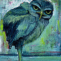 Blue Owl by Diane Ackers