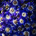 Blue Poem by Edgar Laureano
