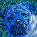 Blue Pug by Jane Schnetlage
