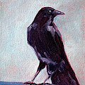 Blue Raven by Nancy Merkle