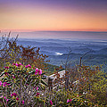 Blue Ridge Dawn by Andrew Soundarajan