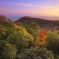 Blue Ridge Mountains In Autumn by Tim Fitzharris
