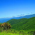 Blue Ridge Mountains by S Ball