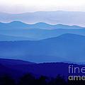 Blue Ridge Mountains Shenandoah National Park by Thomas R Fletcher