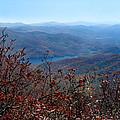 Blue Ridge Parkway IIi by Jeff McJunkin