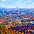Blue Ridge Parkway Overlook by Les Palenik