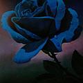 Blue Rose by Blue Sky