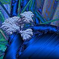 Blue Satin And Mushroom by Lyle Barker