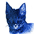 Blue Savannah Cat - 5462 F S by James Ahn