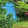 Blue Shed II by Gary Richards