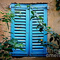Blue Shuttered Window by Lainie Wrightson