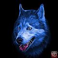 Blue Siberian Husky Dog Art - 6062 - Bb by James Ahn