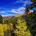 Blue Skies In Colorado by Jeff Swan