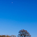 Blue Sky Day by Mark Llewellyn