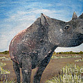 Blue Sky Rhino by Susan Plenzick