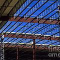 Blue Steel by Jerry McElroy