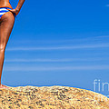 Blue Striped Bikini by Diane Diederich