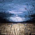 Blue Sunset by Voros Edit