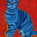 Blue Tabby by Rebecca Ives