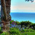 Blue Waters In Palos Verdes California by K D Graves