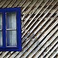 Blue Window by Zoran Berdjan