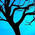 Blue Winter by Debi Starr