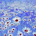 Blue With White Daisies by Georgiana Romanovna