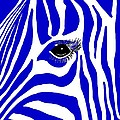 Blue Zebra Eye by Cindy Edwards