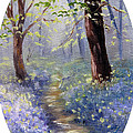 Bluebell Wood by Meaghan Troup