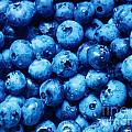 Blueberries by Janell R Colburn