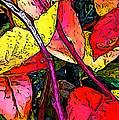 Blueberry Autumn Leaves by Gary Olsen-Hasek
