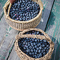 Blueberry Baskets by Edward Fielding