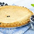 Blueberry Pie by Elena Elisseeva