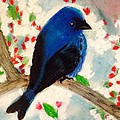Bluebird Amid Apple Blossoms by Renee Michelle Wenker