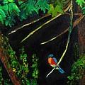 Bluebird Shimmer by Jeannie Allerton