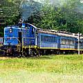 Bluebird Train by Jack Schultz