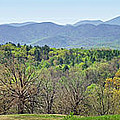 Blueridge Mountains In The Spring by Duane McCullough