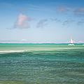 Blues. Mauritius by Jenny Rainbow