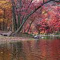 Bluestone River by Mary Almond