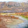 Bluff Canyon Overlook by Barbara Haviland