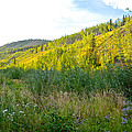 Bluff Overlooking Our Campsite By Stewart River Along Klondike Highway-yt by Ruth Hager